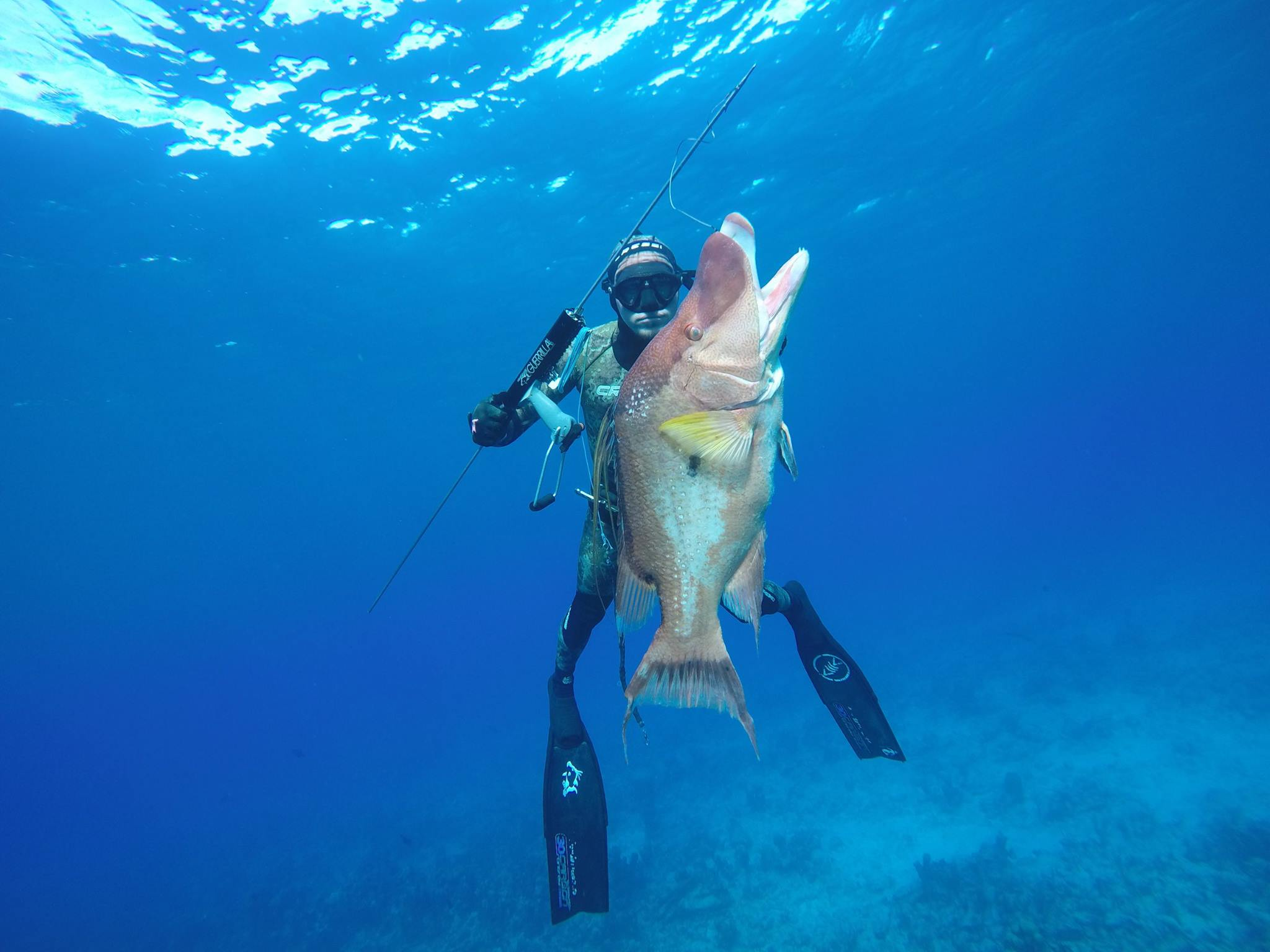 Best fishing charters and spearfishing trips in bahamas for Best fishing vacations