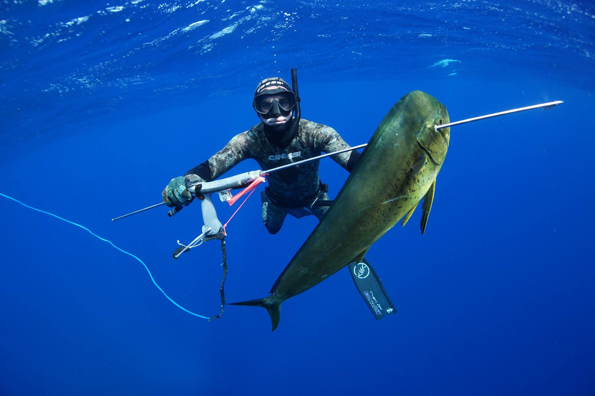 Best fishing charters and spearfishing trips in bahamas for Fishing nassau bahamas